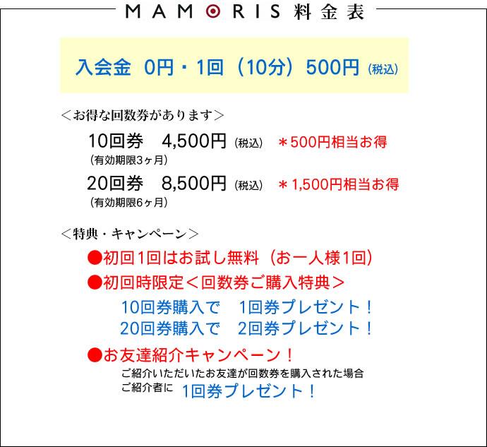 mamoris_r21_c1